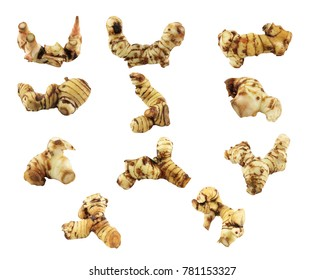 Galangal or thai herb subset with white background and with clipping path.