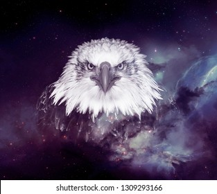 galaxy eagle face wallpaper 260nw 1309293166