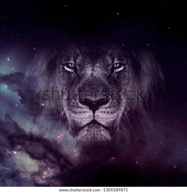 Galaxy Lion Face Wallpaper The Arts Stock Image 1309289875