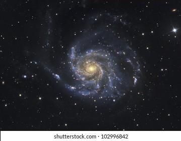 Galaxy M101 in Ursa Major
