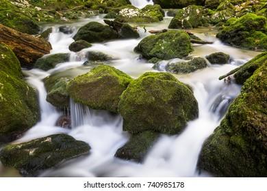 Galbena river in Apuseni natural park, Romania