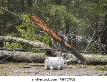 Gale-force winds from Hurricane Irma topple trees and power lines, forcing road closures in Macon, Georgia.
