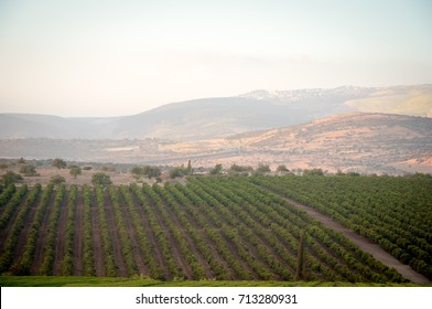 Galilee mountains agricultural valley settlement, Golan , North of Israel .