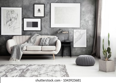 Gallery of artworks hanging on a gray wall, above a beige sofa in monochromatic living room interior with a cactus