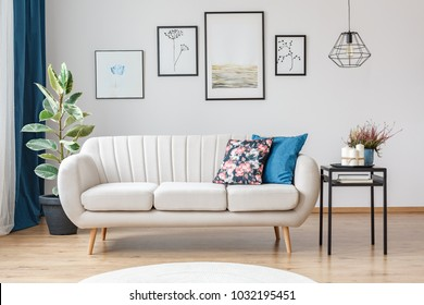 Gallery of posters on white wall in living room interior with beige sofa, ficus and black table