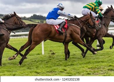 Galloping horse racing action