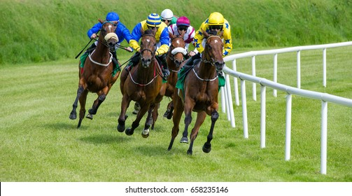 galloping race horses in racing competition