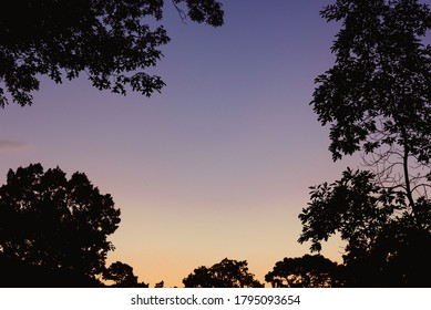 Galloway, NJ / USA - Aug 9 2020: The end of a summer day framed by trees.