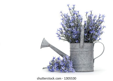 Galvanized Watering Pot Filled with Purple Flowers (room for text)