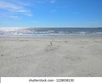 Galveston,Tx Beach View