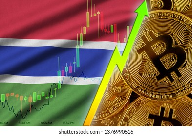 Gambia flag and cryptocurrency growing trend with many golden bitcoins