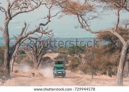 A gamedrive in serengeti national park