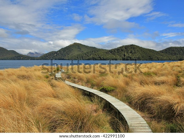Gangplank leading to a public backcountry hut in the Fjordland National Park. Lake Green Lake and hills covered by forests. Tussock.