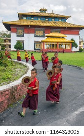 Gangtok, India - May 3, 2017: Unidentified young novice buddhist monks in traditional red robes practicing in playing Tibetan music instrument tingsha in Tsuglakhang monastery, Gangtok, Sikkim, India