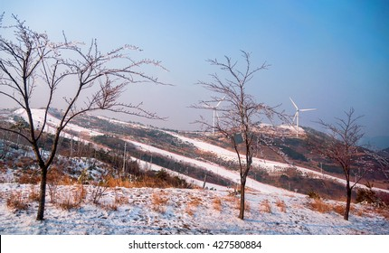 Gangwon-do, Daemyung Vivaldi Park ski resorts, attractions, famous and popular in Korea.