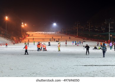 GANGWON-DO, SOUTH KOREA -DEC 16, 2012: People enjoy night Ski at Daemyung Vivaldi Park Ski World. Daemyung Vivaldi Park Ski World is particularly popular due to its daytime and nighttime skiing.