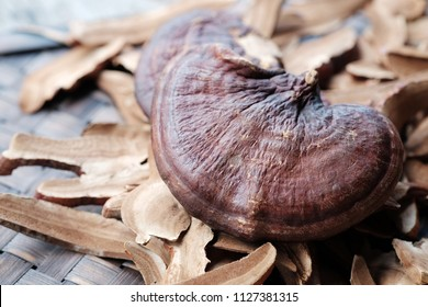 Ganoderma Lucidum Mushroom on wooden background, Herbs for health.