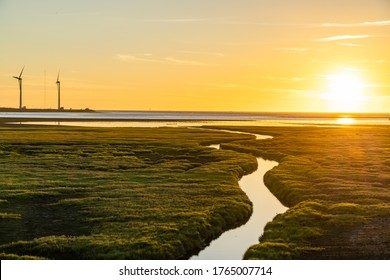 Gaomei Wetlands Area wind turbines in sunset time, a flat land which spans over 300 hectares, also a popular scenic spots in Qingshui District, Taichung City, Taiwan