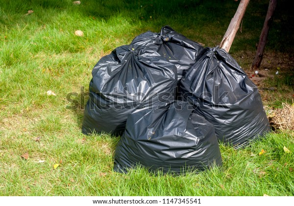 Garbage bags on the grass