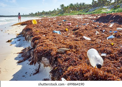 Garbage at the beach / Environmental pollution at idyllic beach concept picture / Caribbean coast of Mexico nearby Cancun