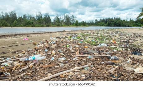 A lot of garbage and plastic bottles on the river shore. Beach pollution. Environmental pollution problem