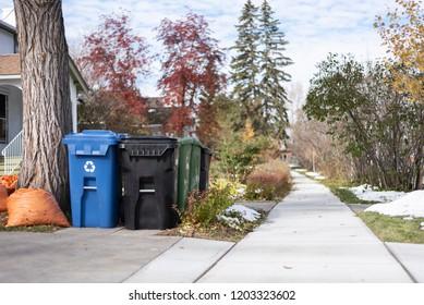 Garbage and recycling bins awaiting pickup