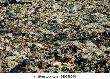 Garbage, sewage, flies, disease, heavy metals, industrial.