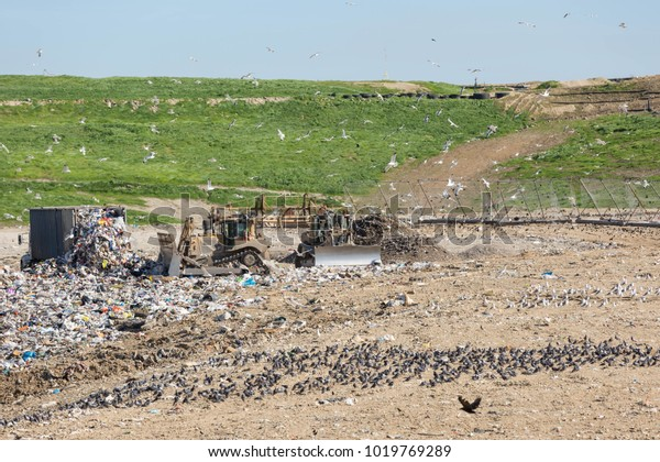 Garbage Trash Being Disposed Landfill By Stock Photo (Edit Now