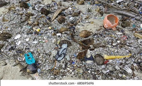 garbage and trash washed on the beach in Cape York