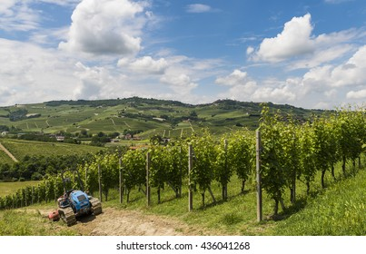 Garbelletto , Italy - June 3, 2016: Vineyards with tracked vehicle (tractor) and hills of Piedmont.