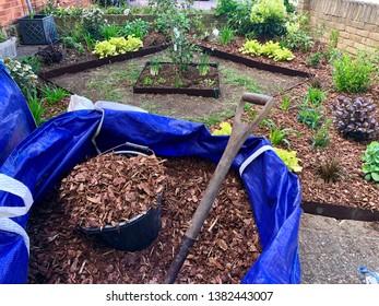 Woodchips Garden Images Stock Photos Vectors Shutterstock