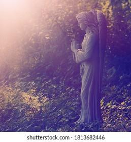 Garden angel statue in prayer