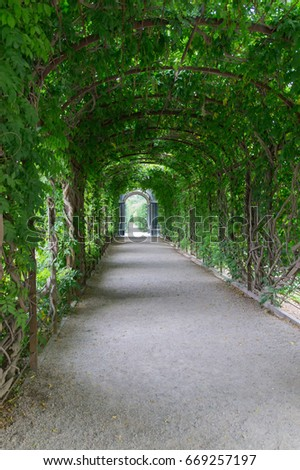 Charmant Garden Arc Of The Green Plants