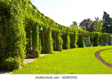 Garden archway in bloom - pergola, Wroclaw, Poland