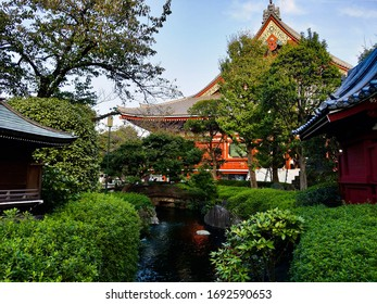 Garden in the Asakusa Shrine, Tokyo, Japan