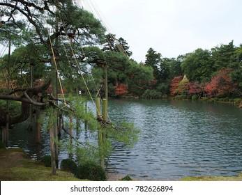 garden Asia