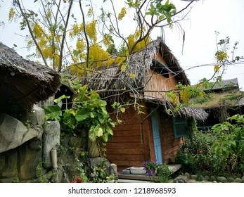 Garden in Bach Cuc Homestay, Long Hai Beach, Ba Ria Vung Tau, Vietnam.