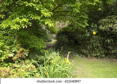 Garden Background Images Stock Photos Vectors
