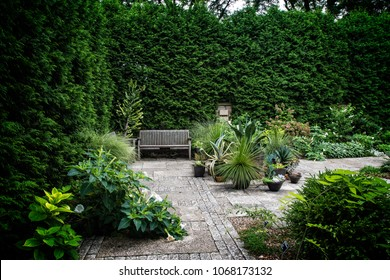 Garden bench in courtyard
