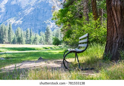 Garden bench on the hiking trail in the camping in the Yosemite National Park