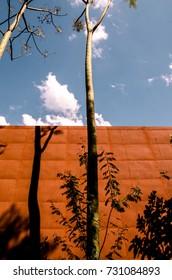 Garden in Brazil