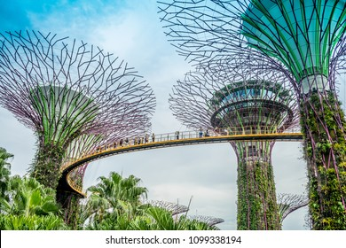 GARDEN BY THE BAY / SINGAPORE, 30 APR 2018 - View of Supertree Landmark at Garden by the bay is the famous park and outdoor of Singapore