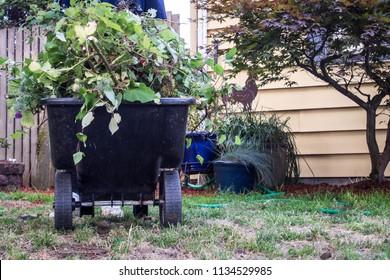 Garden Cart full of weeds
