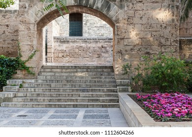 Garden in cathedral area of Palma,Balearic Islands,Spain.