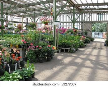 garden center with copy space