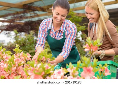 Garden center woman show flowers to smiling customer buying plants