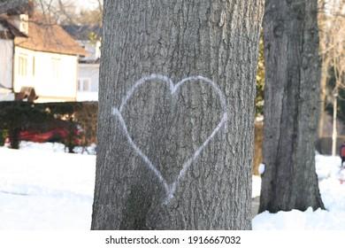 Garden City, New York, USA - February, 5 2021: Heart on Tree