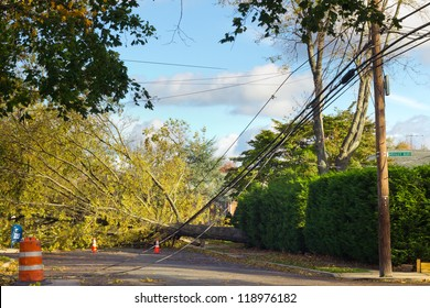 GARDEN CITY, NY - OCT 31: Fallen tree and power lines after Hurricane Sandy in Garden City, NY on Oct 31, 2012.  Sandy struck New York on Oct 29th leaving the area in a State of Emergency.