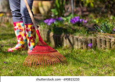 Garden cleaning. Ripening leaves in the spring. Red rakes to the leaves.