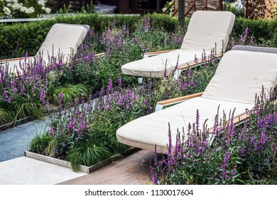 garden deck chair among the lavender flowers in a Park or recreation area